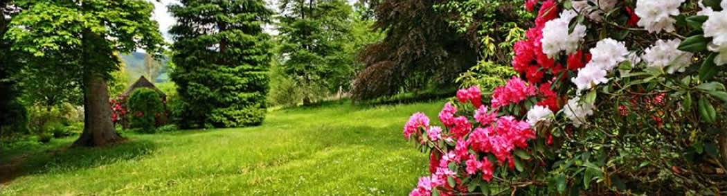 Garden Maintenance Services in Shropshire, Mid-Wales and the Welsh Borders